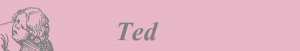 Ted logo